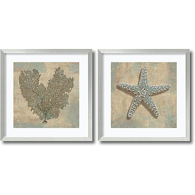 """""Amanti Art """"""""Aqua Fan Coral & Starfish - Set of 2"""""""" Framed Art Print by Caroline Kelly, 26.88""""""""H x 26.88""""""""W"""""" 1388435"