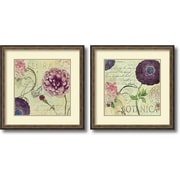"Amanti Art ""Flora and Botanica - Set of 2"" Framed Art Print by Aimee Wilson, 26.63""H x 26.63""W"