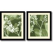Amanti Art Eucalyptus Buds - Set of 2 Framed Art Print by Steven N. Meyers, 31.63H x 27.13W