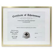 "Lawrence Frames 11"" x 14"" Aluminum Gold Document Frame (240211)"