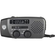 Champs® Mini Weather Radio With USB Charging