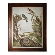 "Sterling Industries ""Sanctuary for Birds"" Framed Wall Art, 47""H x 37""W"