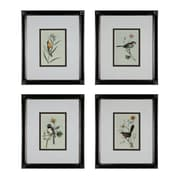 "Sterling Industries ""Birds on a Branch - Set of 4"" Framed Wall Art, 20""H X 17""W"