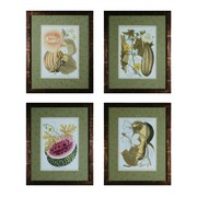 Sterling Industries Fruit On The Vine - Set of 4 Framed Wall Art, 21.75H x 17.75W