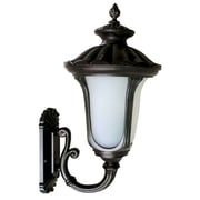 "Yosemite Home Decor 18.75"" x 9.5"" Steel & Glass Outdoor Wall Sconce"