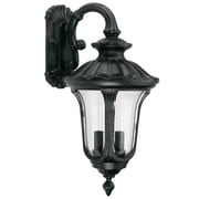 Yosemite Home Decor 11 Steel & Frosted Glass Exterior Sconce, Black