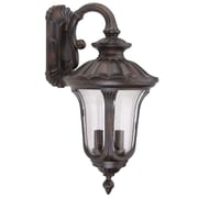 Yosemite Home Decor 11 Steel & Frosted Glass Exterior Sconce, Brown