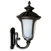 Yosemite Home Decor Fluorescent Exterior Sconce Brown Frame with Frosted Glass