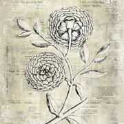"Yosemite Home Decor uncheck Life Linen Print Artwork, 20"" x 20"" Antiqued Bloom II"