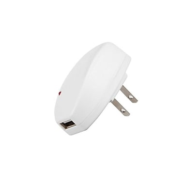 Insten® 110 - 220 VAC 1A In-Travel USB Charger Adapter With IC Chips, White