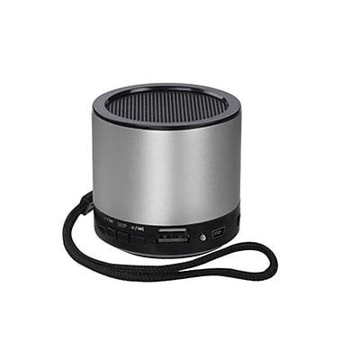 Insten® 6W Mobile Speaker, Silver