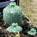 Stout EcoSafe-6400 Compostable Compost Bag, 33in. x 48in., Green