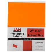 Jam® Paper 2 x 4 Address Label, Neon Orange, 10 Labels per Page, 120/Pack