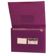 Jam® 9 x 13 Letter Size 13 Pocket Expanding File, Purple Frost Grid, 24/Pack
