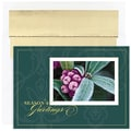 Jam® Winter Wonderland Holiday Card Set With 16 Cards and Envelopes, Winter Berry