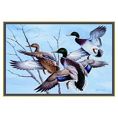 Custom Printed Rugs Wildlife Mallards Novelty Outdoor Area Rug; 3'1'' x 4'4''