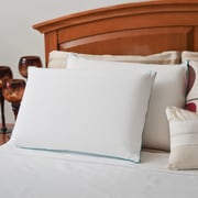 OrthoTherapy MyGel Memory Foam Traditional Standard Pillows (Set of 2)