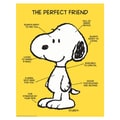 Eureka® 17in. x 22in. Poster, Peanuts® The Perfect Friend