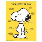 "Eureka® 17"" x 22"" Poster, Peanuts® The Perfect Friend"