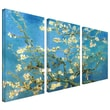 ArtWall in.Almond Blossomin. 3 Piece Gallery Wrapped Canvas Art By Vincent Van Gogh, 54in. x 36in.