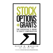 Stock options equity