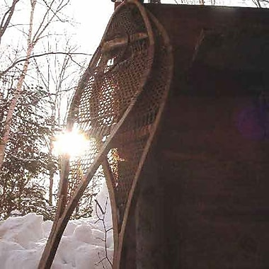 Dogsledding & Snowshoeing for 1 Experience, St-Jean-d'Orleans, QC