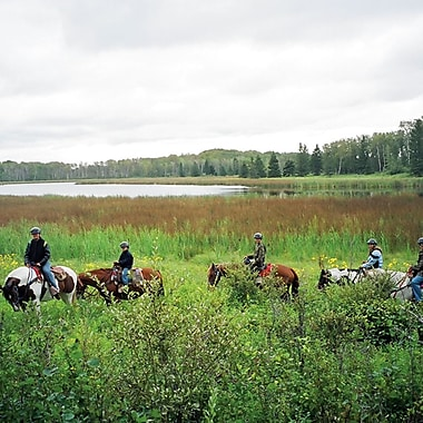 Moutain Horseback Riding Experience, Lake Audy, MN