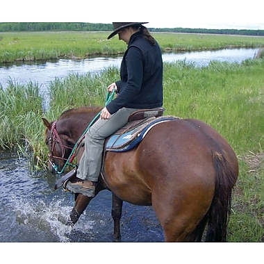 Mountain Horseback Riding Experience (Half Day), Lake Audy, MN
