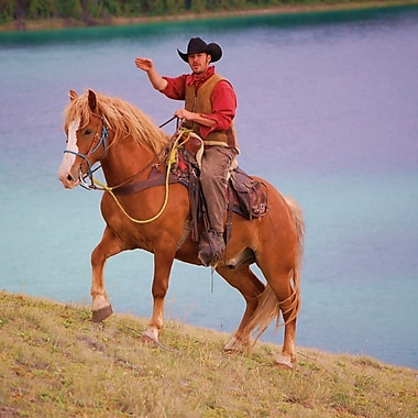 Moutain Horseback Riding Experience (2-Hour), Whitehorse, YT