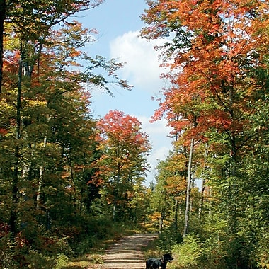 Hiking Experience, Haliburton, ON