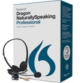 Nuance Communications A209A-S00-13.0 Dragon NaturallySpeaking Professional (v.13)