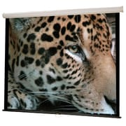 "Hamilton™ Buhl Wall Projector Screen, 50"" x 50"""