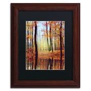 "Trademark Philippe Sainte-Laudy ""Fall Mirror"" Art, Black Matte With Wood Frame, 11"" x 14"""
