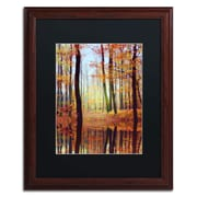 "Trademark Philippe Sainte-Laudy ""Fall Mirror"" Art, Black Matte With Wood Frame, 16"" x 20"""