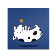 "Trademark Carla Martell ""Star Dog"" Gallery-Wrapped Canvas Art, 14"" x 14"""