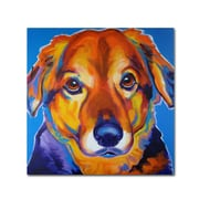 "Trademark DawgArt ""Riley Square"" Gallery-Wrapped Canvas Art, 18"" x 18"""