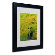 "Trademark Kathie McCurdy ""Forest Beauty"" Art, White Matte With Black Frame, 11"" x 14"""