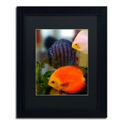 "Trademark Kurt Shaffer ""Multi-colored Discus"" Art, Black Matte With Black Frame, 11"" x 14"""