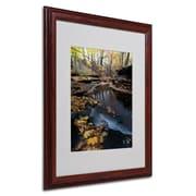 Trademark Kurt Shaffer Autumn Stream Art, White Matte With Wood Frame, 16 x 20