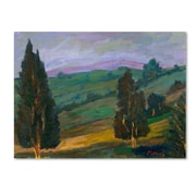 Trademark Manor Shadian Evergreens on a Green Slope Gallery-Wrapped Canvas Art, 35 x 47