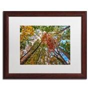 Trademark David Ayash New York Fall-I Art, White Matte With Wood Frame, 16 x 20