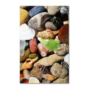 "Trademark Michelle Calkins ""Petoskey Stones l"" Gallery-Wrapped Canvas Art, 12"" x 19"""