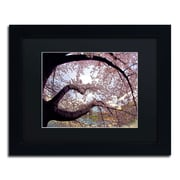 "Trademark CATeyes ""Cherry Blossoms 2014-1"" Art, Black Matte W/Black Frame, 11"" x 14"""