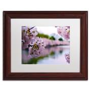 "Trademark CATeyes ""Cherry Blossoms 2014-2"" Art, White Matte W/Wood Frame, 11"" x 14"""