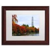 "Trademark CATeyes ""Tidal Basin Autumn 3"" Art, White Matte W/Wood Frame, 11"" x 14"""