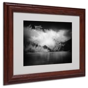 "Trademark Philippe Sainte-Laudy ""Black Beauty"" Art, White Matte With Wood Frame, 11"" x 14"""