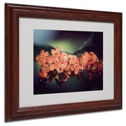 "Trademark Philippe Sainte-Laudy ""Flowers Waiting"" Art, White Matte With Wood Frame, 11"" x 14"""
