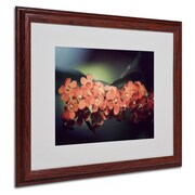 "Trademark Philippe Sainte-Laudy ""Flowers Waiting"" Art, White Matte With Wood Frame, 16"" x 20"""