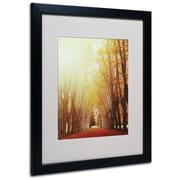 "Trademark Philippe Sainte-Laudy ""Fountains of Light"" Art, White Matte With Black Frame, 16"" x 20"""