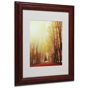 "Trademark Philippe Sainte-Laudy ""Fountains of Light"" Art, White Matte With Wood Frame, 11"" x 14"""
